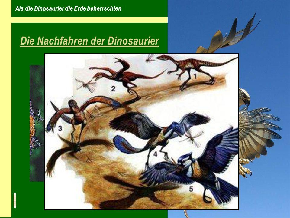 Als die Dinosaurier die Erde beherrschten Die Nachfahren der Dinosaurier zur Zeit der Dinosaurier gab es bereits Krokodile und Urschildkröten Wissenschaftler glauben, dass andere Tiere die Nachfahren der Dinosaurier sind diese Tiere leben noch mitten unter uns die VÖGEL Velociraptor