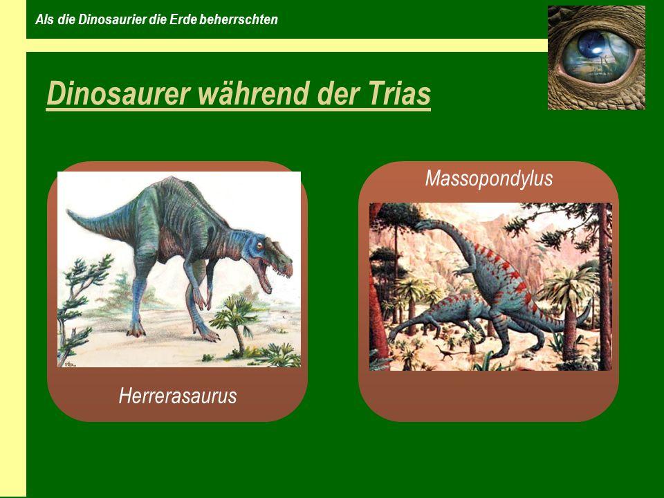 Als die Dinosaurier die Erde beherrschten Dinosaurer während der Trias Herrerasaurus Massopondylus