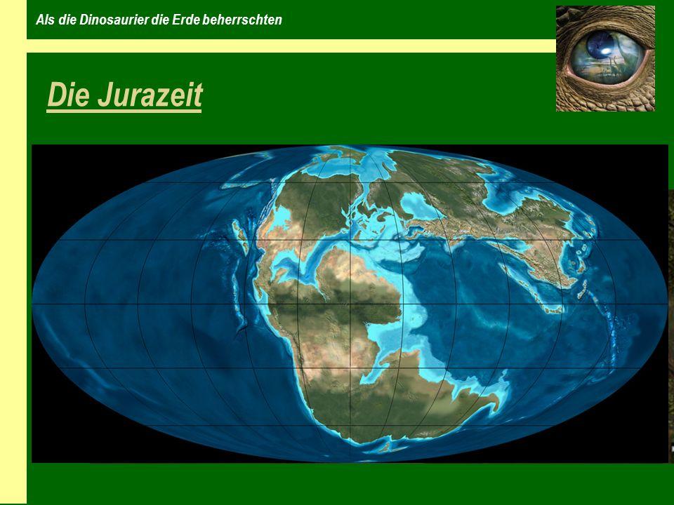 Als die Dinosaurier die Erde beherrschten Dinosaurier während der Jurazeit Baryonyx Allosaurus Stegosaurus