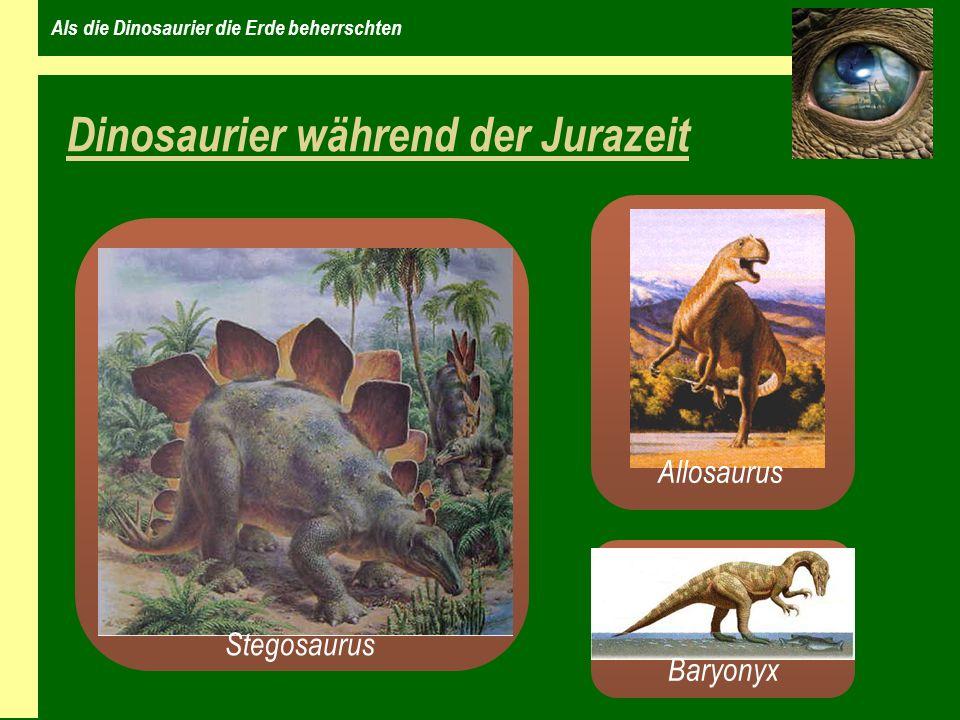 Als die Dinosaurier die Erde beherrschten Die Kreide – die Erde wird bunt Vor 140 – 65 Millionen Jahren Kontinente teilten sich Bergketten entstehen warmes und mildes Klima Blumen tauchen auf