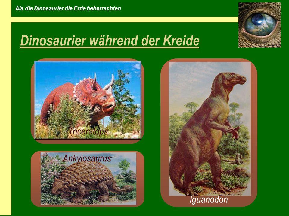 Als die Dinosaurier die Erde beherrschten Dinosaurier während der Kreide Iguanodon Triceratops Ankylosaurus