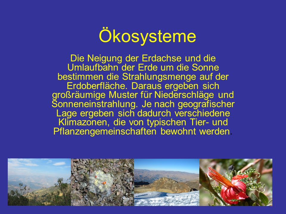 Ökosysteme Deshalb können auf der Erde verschiedene, große Ökosystemtypen (Biome) unterschieden werden.