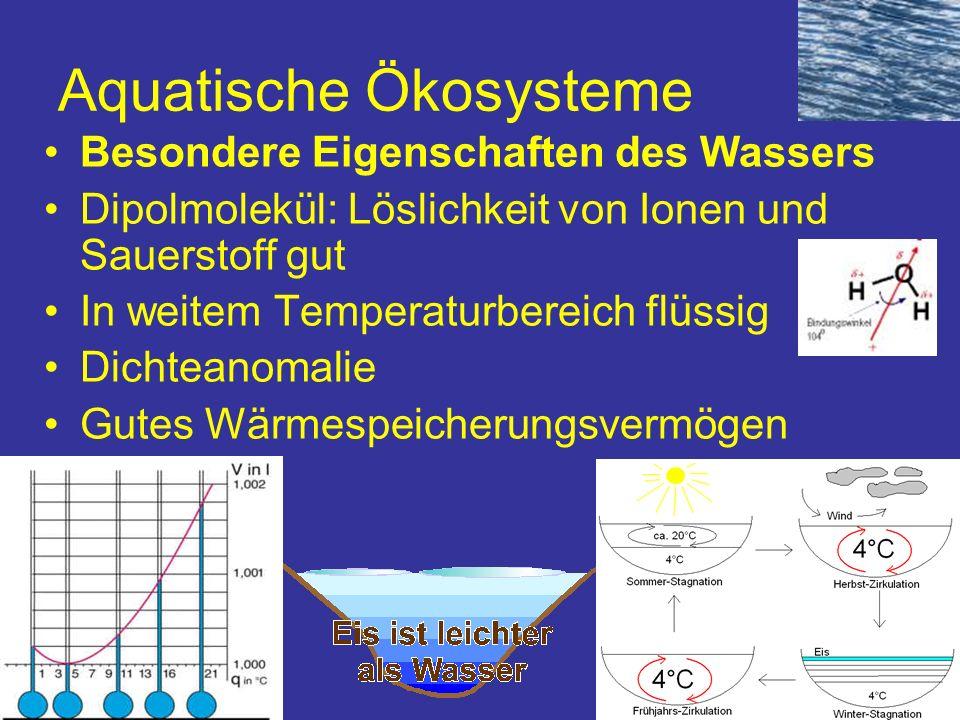 Aquatische Ökosysteme Besondere Eigenschaften des Wassers Dipolmolekül: Löslichkeit von Ionen und Sauerstoff gut In weitem Temperaturbereich flüssig D