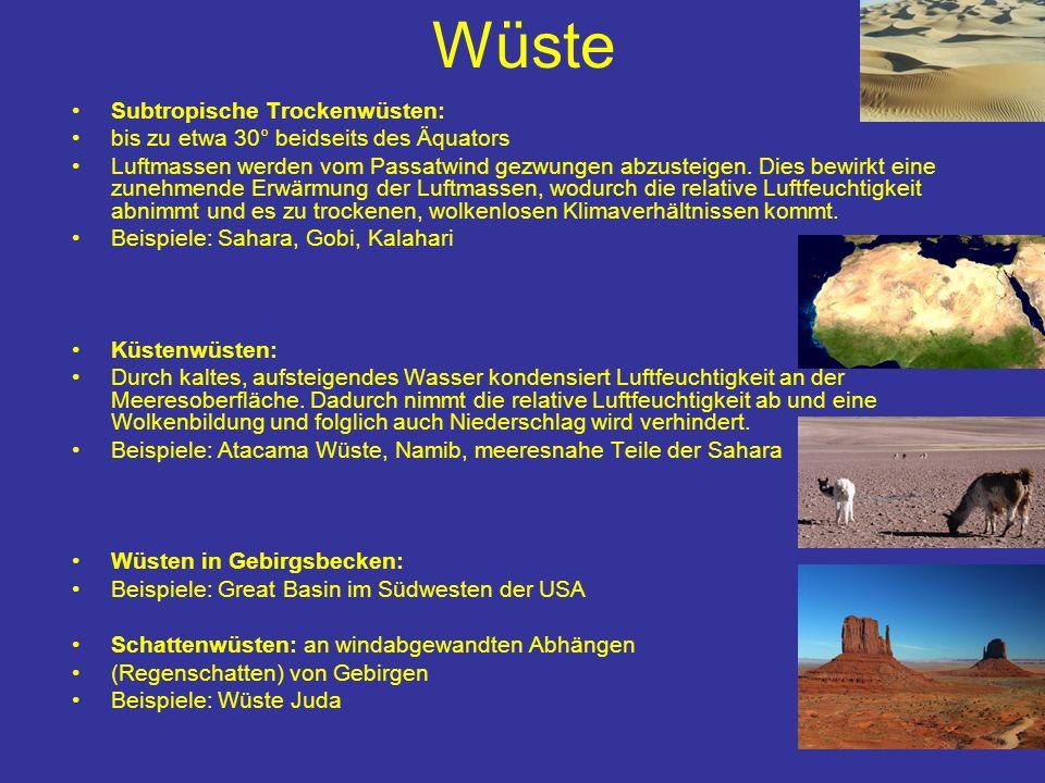 Wüste Vegetationslos bzw.
