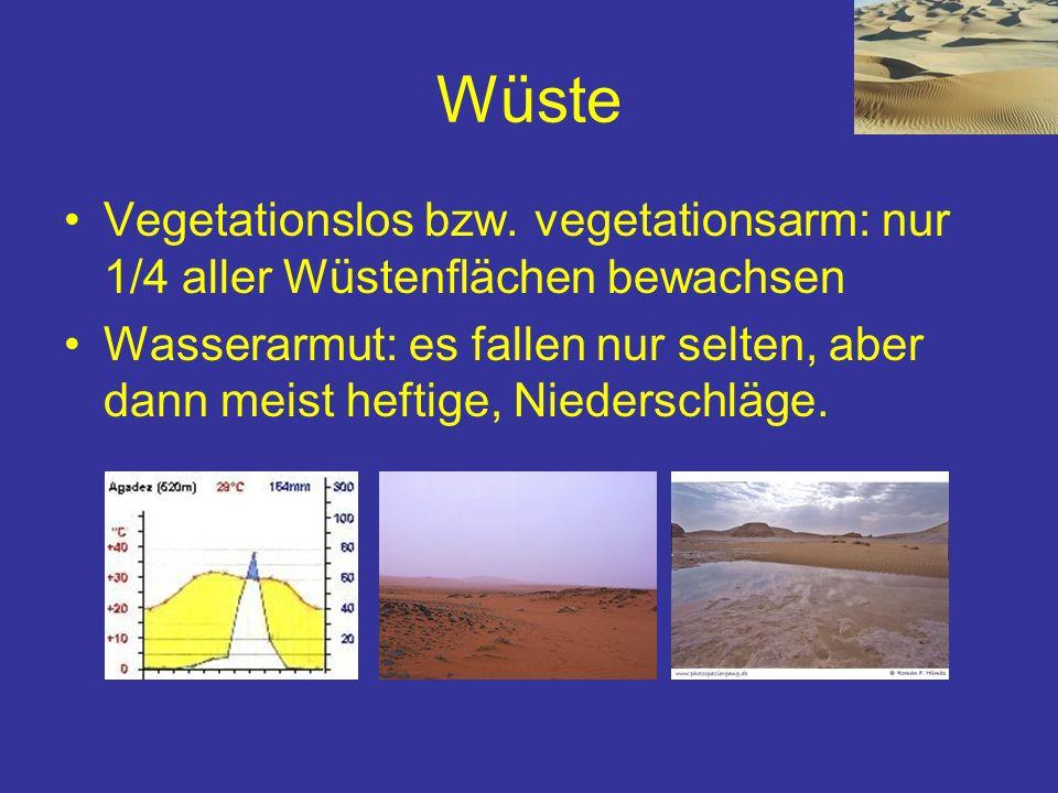 Wüste Vegetationslos bzw. vegetationsarm: nur 1/4 aller Wüstenflächen bewachsen Wasserarmut: es fallen nur selten, aber dann meist heftige, Niederschl
