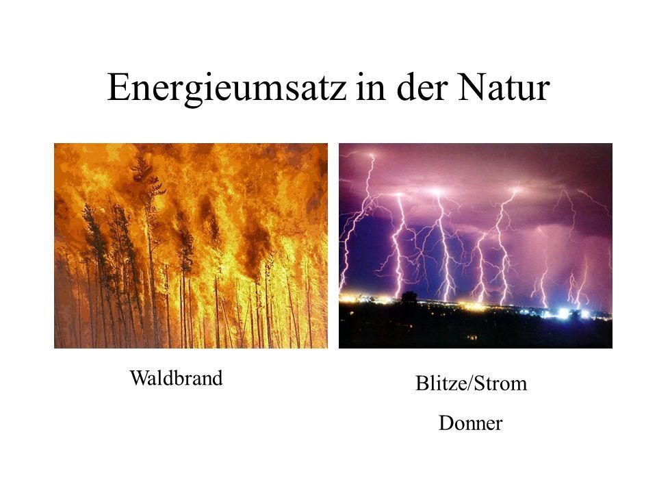 Energieumsatz in der Natur Waldbrand Blitze/Strom Donner