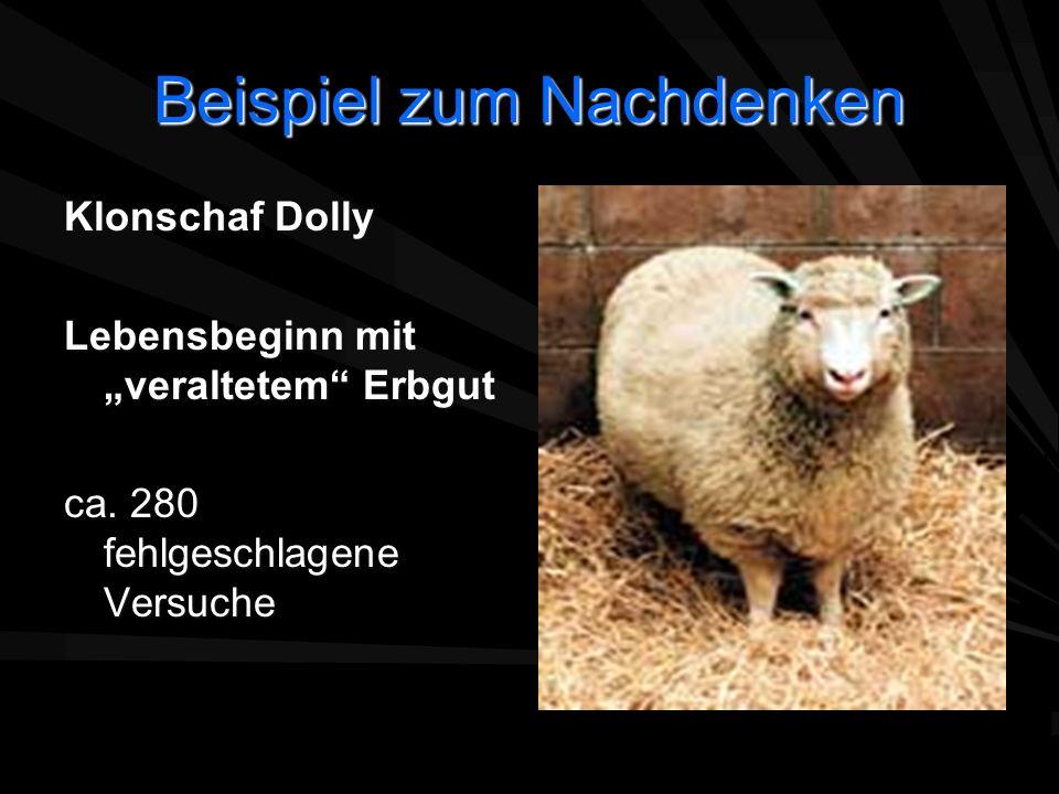 Beispiel zum Nachdenken Klonschaf Dolly Lebensbeginn mit veraltetem Erbgut ca. 280 fehlgeschlagene Versuche