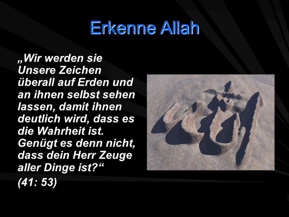 Erkenne Allah Wir werden sie Unsere Zeichen überall auf Erden und an ihnen selbst sehen lassen, damit ihnen deutlich wird, dass es die Wahrheit ist. G