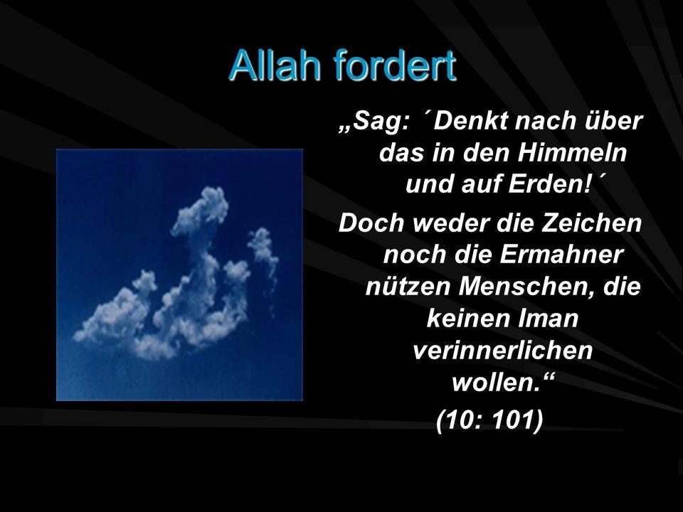Allah fordert Sag: ´ Denkt nach über das in den Himmeln und auf Erden!´ Doch weder die Zeichen noch die Ermahner nützen Menschen, die keinen Iman veri