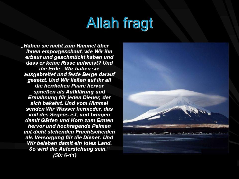 Allah fragt Haben sie nicht zum Himmel über ihnen emporgeschaut, wie Wir ihn erbaut und geschmückt haben und dass er keine Risse aufweist? Und die Erd