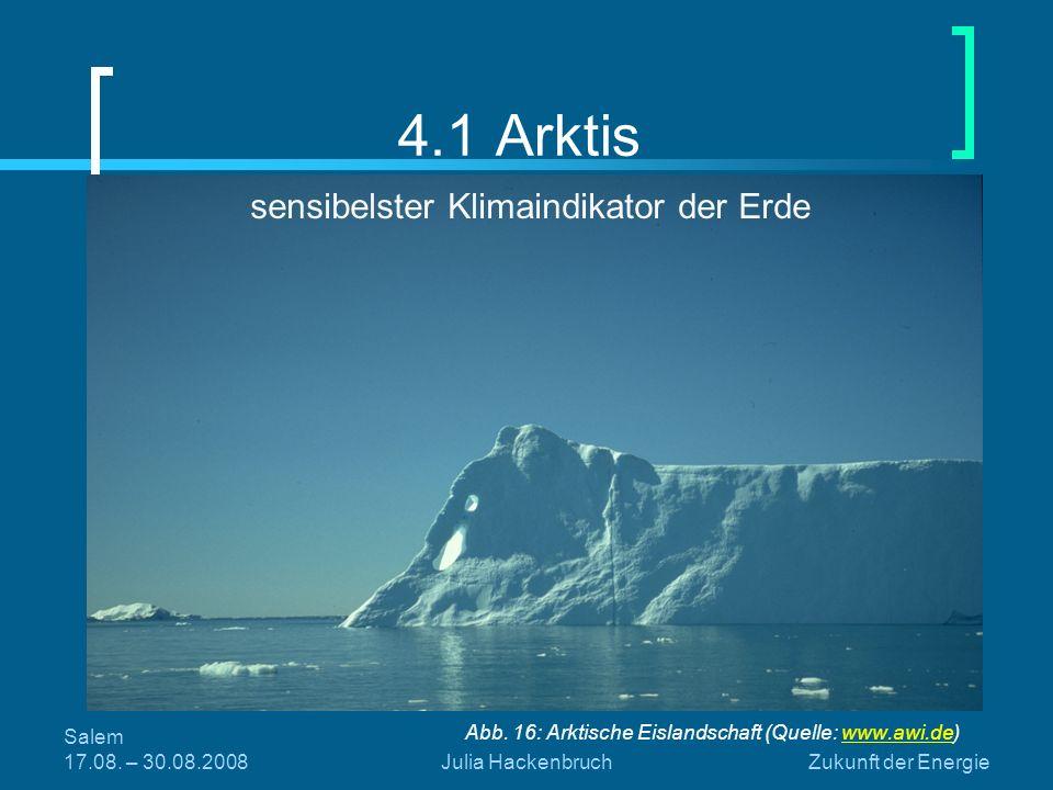Salem 17.08. – 30.08.2008Julia HackenbruchZukunft der Energie 4.1 Arktis Abb. 16: Arktische Eislandschaft (Quelle: www.awi.de)www.awi.de sensibelster