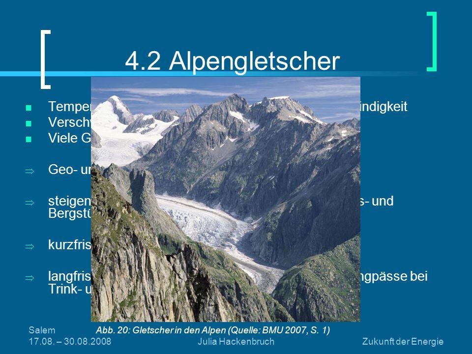 Salem 17.08. – 30.08.2008Julia HackenbruchZukunft der Energie 4.2 Alpengletscher Temperaturanstieg in den Alpen in doppelter Geschwindigkeit Verschwin