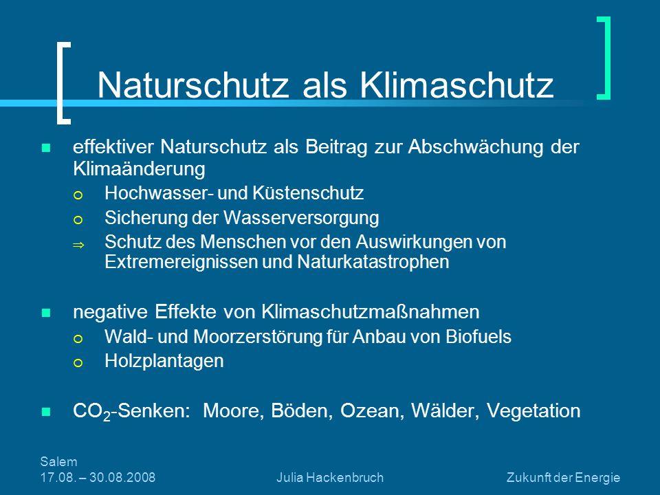 Salem 17.08. – 30.08.2008Julia HackenbruchZukunft der Energie Naturschutz als Klimaschutz effektiver Naturschutz als Beitrag zur Abschwächung der Klim