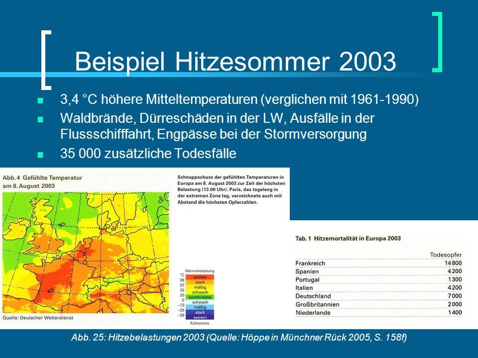 Salem 17.08. – 30.08.2008Julia HackenbruchZukunft der Energie Beispiel Hitzesommer 2003 3,4 °C höhere Mitteltemperaturen (verglichen mit 1961-1990) Wa