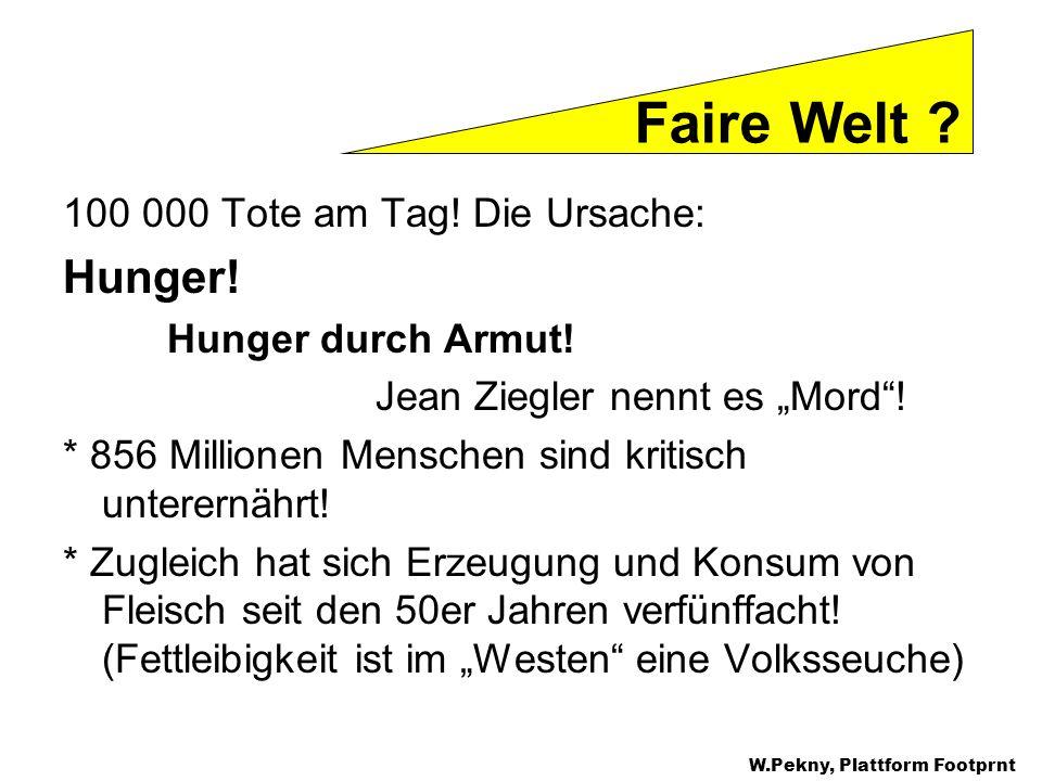 100 000 Tote am Tag! Die Ursache: Hunger! Hunger durch Armut! Jean Ziegler nennt es Mord! * 856 Millionen Menschen sind kritisch unterernährt! * Zugle