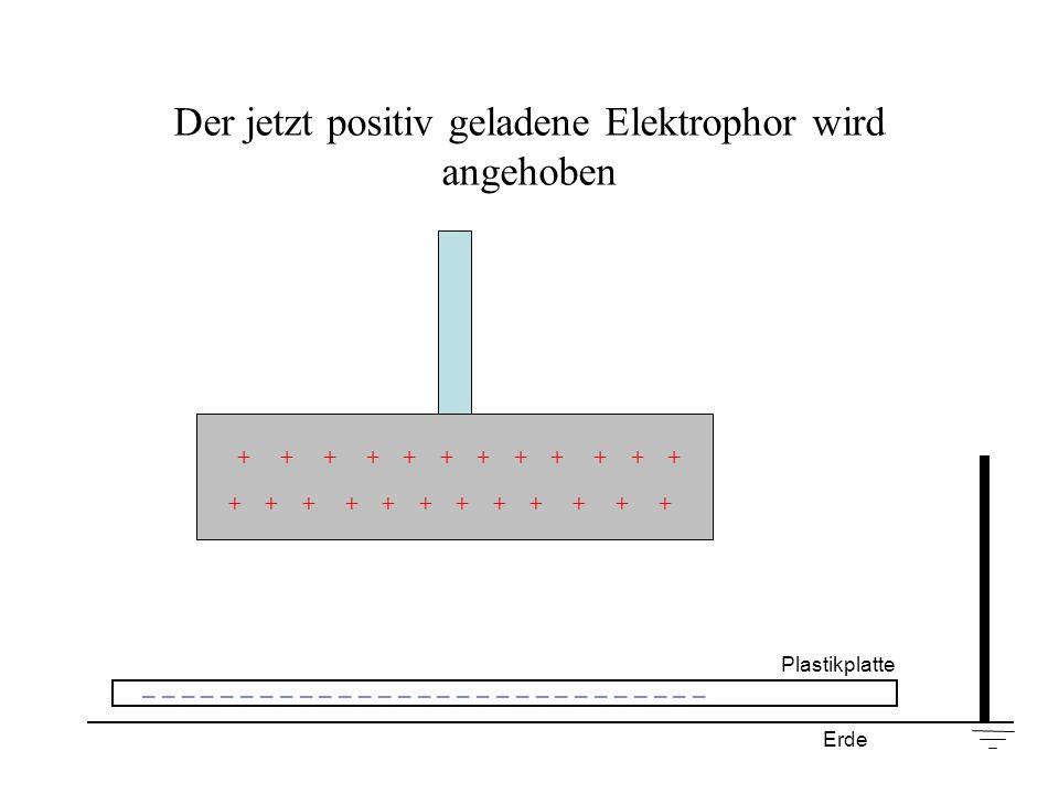 Der jetzt positiv geladene Elektrophor wird angehoben + + + + + + Plastikplatte _ _ _ _ _ _ _ _ _ _ _ _ _ _ _ _ _ _ _ _ _ _ _ _ _ _ _ _ _ Erde