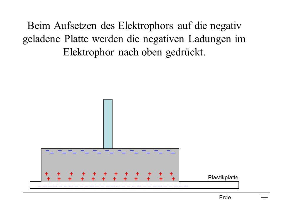 Beim Aufsetzen des Elektrophors auf die negativ geladene Platte werden die negativen Ladungen im Elektrophor nach oben gedrückt. Plastikplatte _ _ _ _