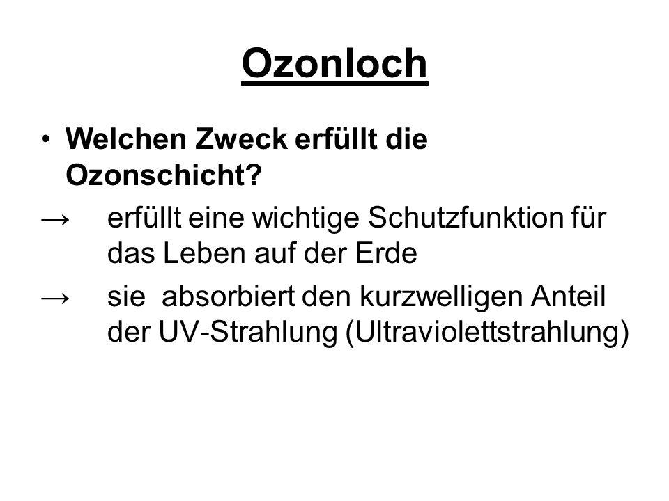 Ozonloch: Bezeichnung für die zerstörte Ozonschicht Die in die Stratosphäre eingetragenen Stoffe reagieren mit dort befindlichem Ozon Das Ozon wird aufgespaltet Die Menge des Ozons in der Stratosphäre nimmt ab Die Ozonschicht kann ihre schützende Funktion immer weniger erfüllen Ein einzelnes Chloratom kann bis zu 100.000 Ozonmoleküle zerstören