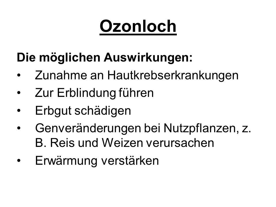 Ozonloch Die möglichen Auswirkungen: Zunahme an Hautkrebserkrankungen Zur Erblindung führen Erbgut schädigen Genveränderungen bei Nutzpflanzen, z. B.