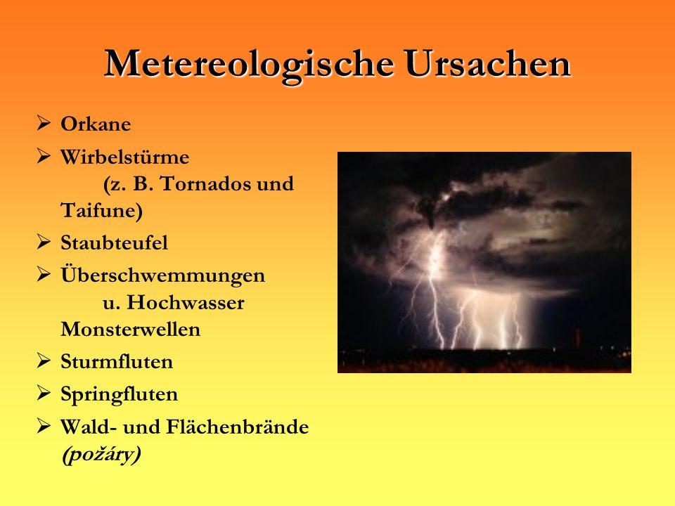 Metereologische Ursachen Orkane Wirbelstürme (z. B. Tornados und Taifune) Staubteufel Überschwemmungen u. Hochwasser Monsterwellen Sturmfluten Springf