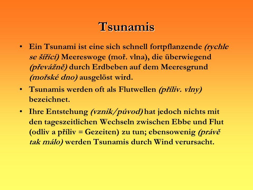 Tsunamis Ein Tsunami ist eine sich schnell fortpflanzende (rychle se šířící) Meereswoge (moř. vlna), die überwiegend (převážně) durch Erdbeben auf dem