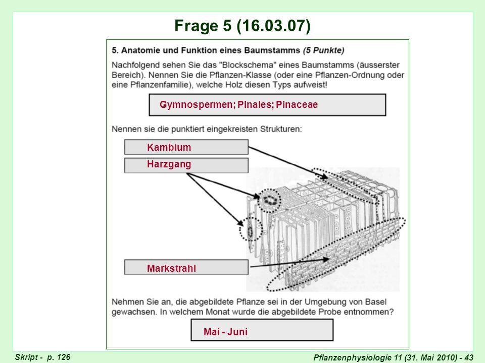 Pflanzenphysiologie 11 (31. Mai 2010) - 43 Frage 4: Saccharose-Bildung Skript - p. 126 Frage 5 (16.03.07) Gymnospermen; Pinales; Pinaceae Mai - Juni H