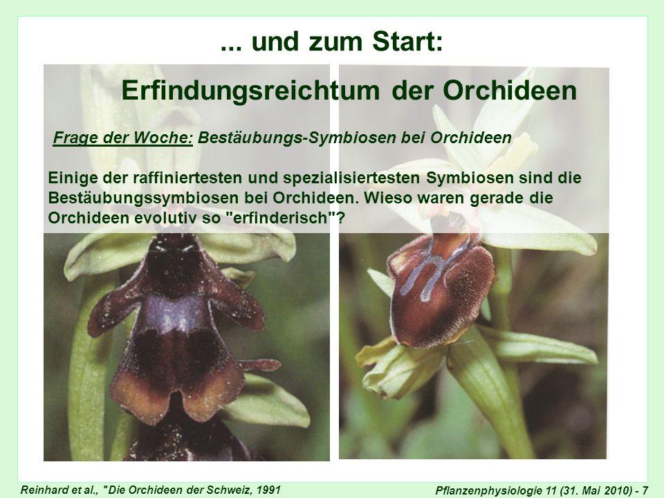 Pflanzenphysiologie 11 (31. Mai 2010) - 7 Frage der Woche: Erfindungsreichtum der Orchideen Reinhard et al.,