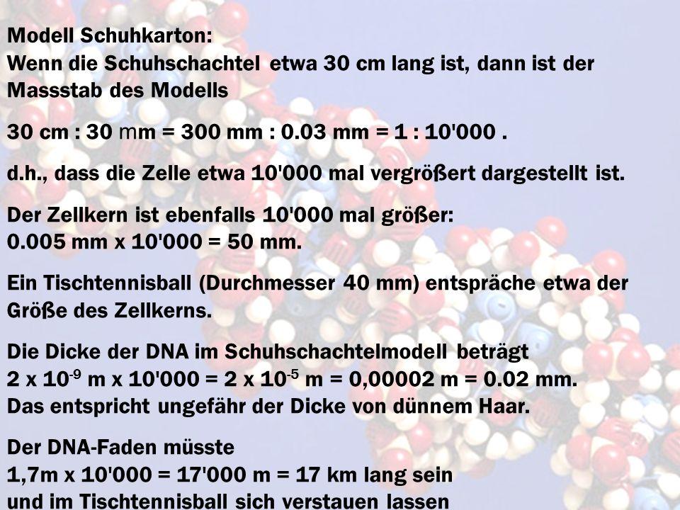 Modell Schuhkarton: Wenn die Schuhschachtel etwa 30 cm lang ist, dann ist der Massstab des Modells 30 cm : 30 m m = 300 mm : 0.03 mm = 1 : 10'000. d.h