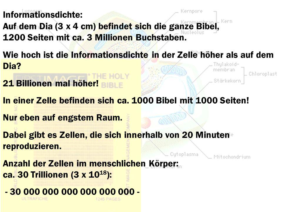 Informationsdichte: Auf dem Dia (3 x 4 cm) befindet sich die ganze Bibel, 1200 Seiten mit ca. 3 Millionen Buchstaben. Wie hoch ist die Informationsdic
