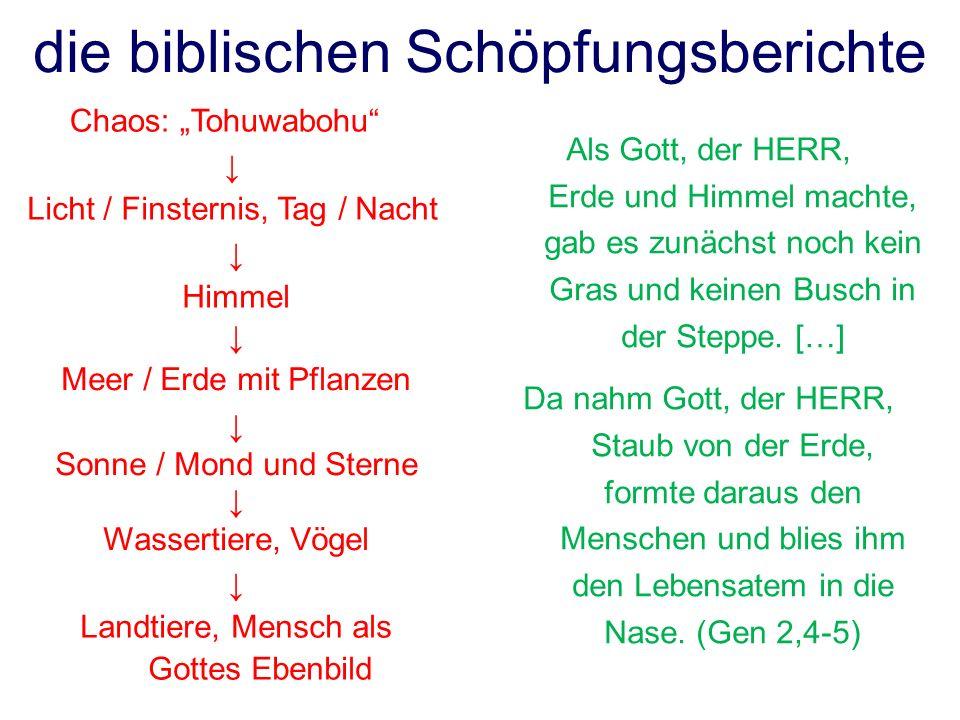 die biblischen Schöpfungsberichte Licht / Finsternis, Tag / Nacht Chaos: Tohuwabohu Himmel Meer / Erde mit Pflanzen Sonne / Mond und Sterne Wassertier