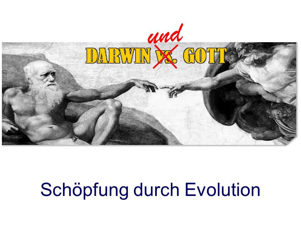 und Schöpfung durch Evolution