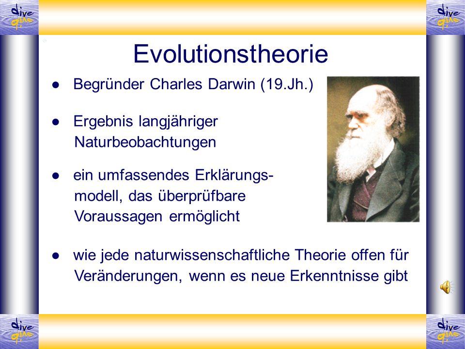 Evolutionstheorie Begründer Charles Darwin (19.Jh.) Ergebnis langjähriger Naturbeobachtungen ein umfassendes Erklärungs- modell, das überprüfbare Vora