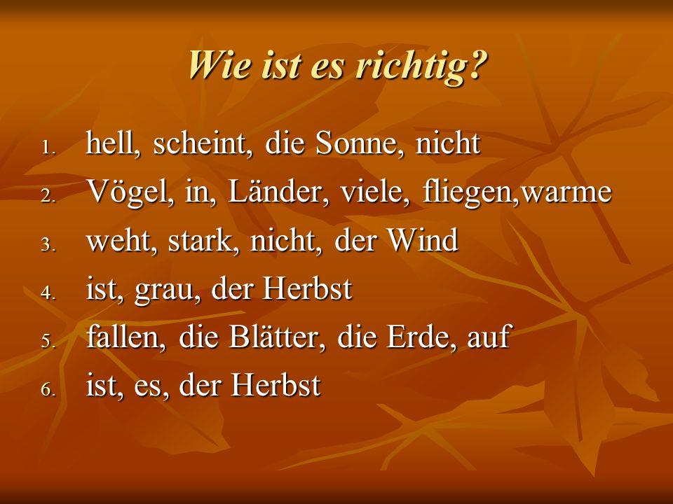 Wie ist es richtig? 1. hell, scheint, die Sonne, nicht 2. Vögel, in, Länder, viele, fliegen,warme 3. weht, stark, nicht, der Wind 4. ist, grau, der He