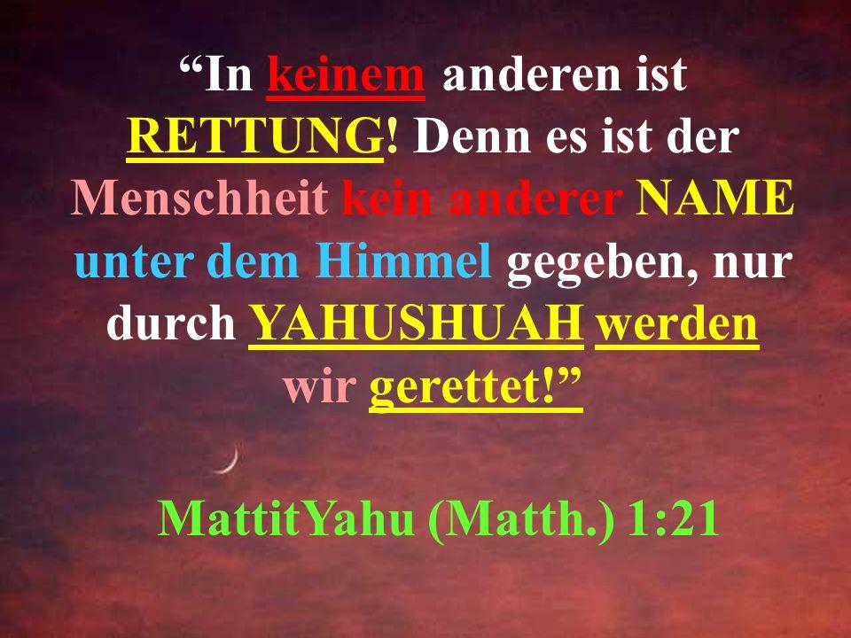 Liebe Freunde und Sucher der Wahrheit: Es gibt nur einen Weg, um zum Vater zu kommen, Yahuah, und das geschieht durch Seinen einzigen eingeborenen Soh