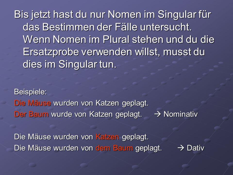 Bis jetzt hast du nur Nomen im Singular für das Bestimmen der Fälle untersucht.