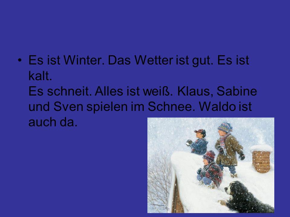Es ist Winter. Das Wetter ist gut. Es ist kalt. Es schneit. Alles ist weiß. Klaus, Sabine und Sven spielen im Schnee. Waldo ist auch da.