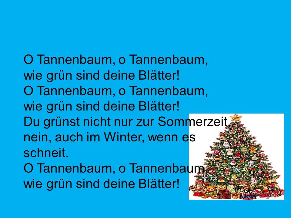 O Tannenbaum, o Tannenbaum, wie grün sind deine Blätter! O Tannenbaum, o Tannenbaum, wie grün sind deine Blätter! Du grünst nicht nur zur Sommerzeit,