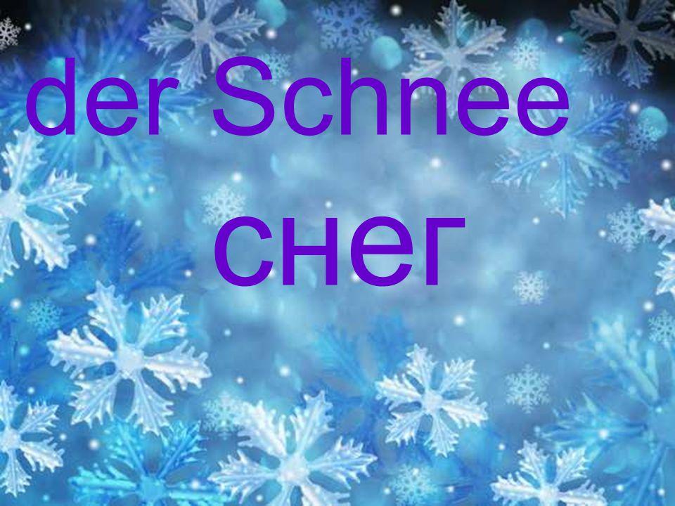 Es ist Winter.Alles ist weiß. Susi, Dieter, Hans und kleiner Peter sind im Hof.