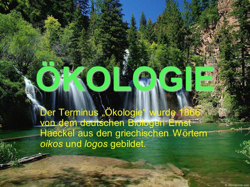 ÖKOLOGIE Der Terminus Ökologie wurde 1866 von dem deutschen Biologen Ernst Haeckel aus den griechischen Wörtern oikos und logos gebildet.