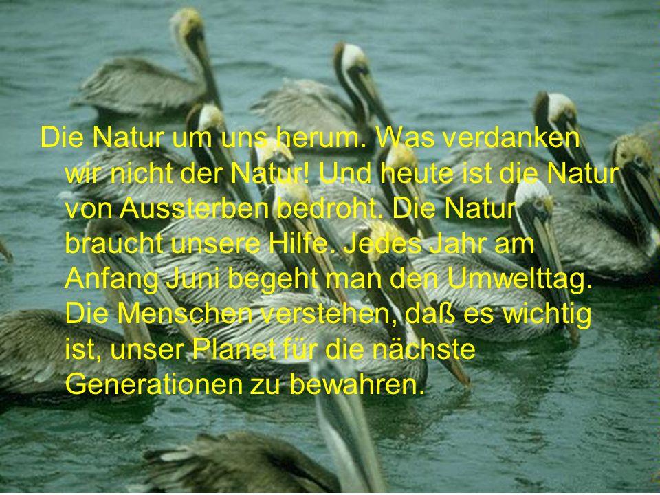 Die Natur um uns herum. Was verdanken wir nicht der Natur! Und heute ist die Natur von Aussterben bedroht. Die Natur braucht unsere Hilfe. Jedes Jahr