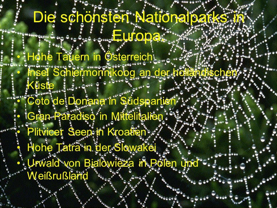 Die schönsten Nationalparks in Europa. Hohe Tauern in Österreich Insel Schiermonnikoog an der holländischen Küste Coto de Donana in Südspanien Gran Pa