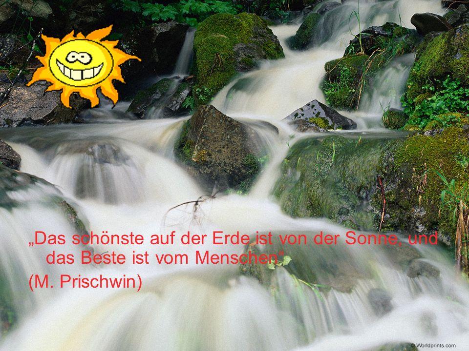 Heinrich Heine meint, daß der Mensch ein kleiner Teil der Natur ist.