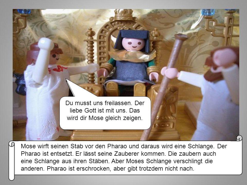 Du musst uns freilassen. Der liebe Gott ist mit uns. Das wird dir Mose gleich zeigen. Mose wirft seinen Stab vor den Pharao und daraus wird eine Schla