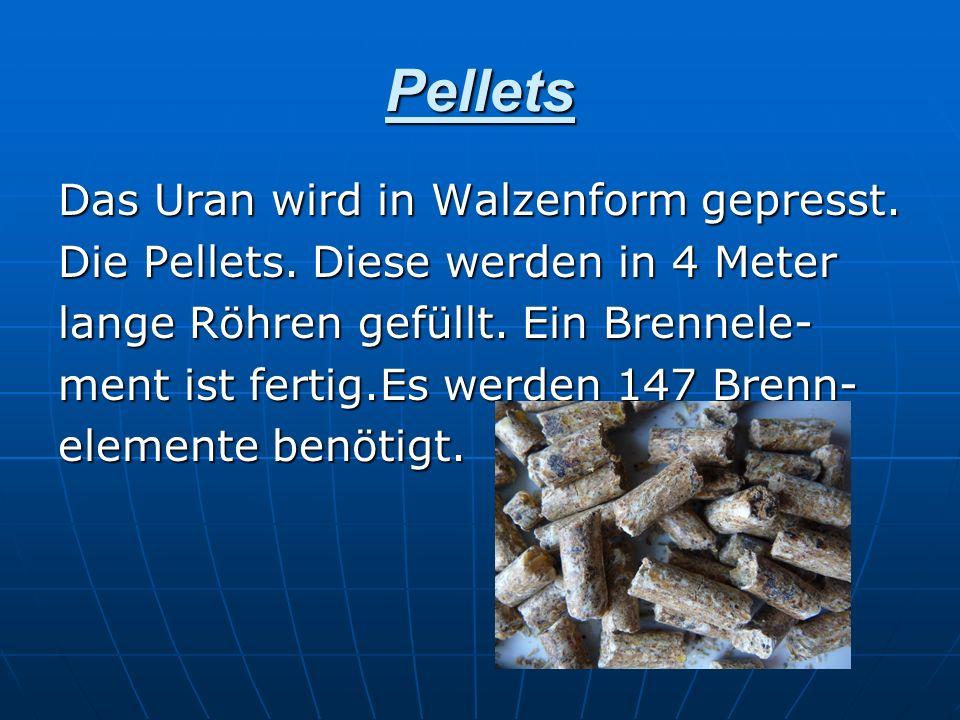 Pellets Das Uran wird in Walzenform gepresst. Die Pellets. Diese werden in 4 Meter lange Röhren gefüllt. Ein Brennele- ment ist fertig.Es werden 147 B