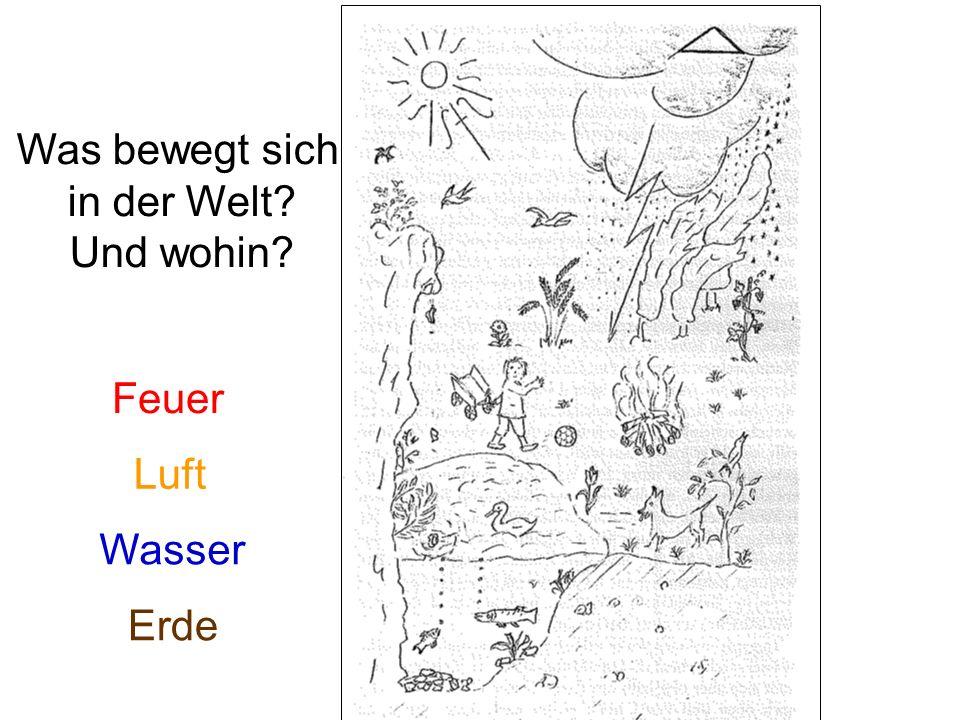Sr.Lydia La Dous: Galileo Galilei. Geschichte eines Falles.– Topos: Kevelaer 2007 Sr.