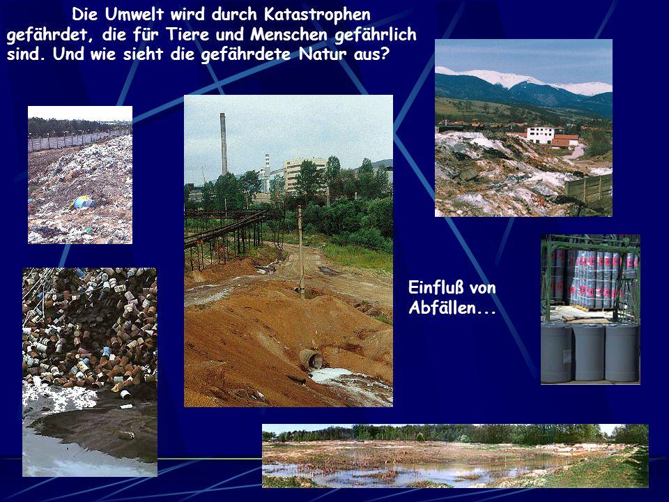 Die Umwelt wird durch Katastrophen gefährdet, die für Tiere und Menschen gefährlich sind.