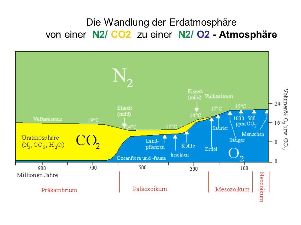 Die Wandlung der Erdatmosphäre von einer N2/ CO2 zu einer N2/ O2 - Atmosphäre