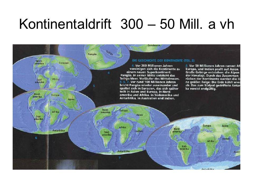 Kontinentaldrift 300 – 50 Mill. a vh