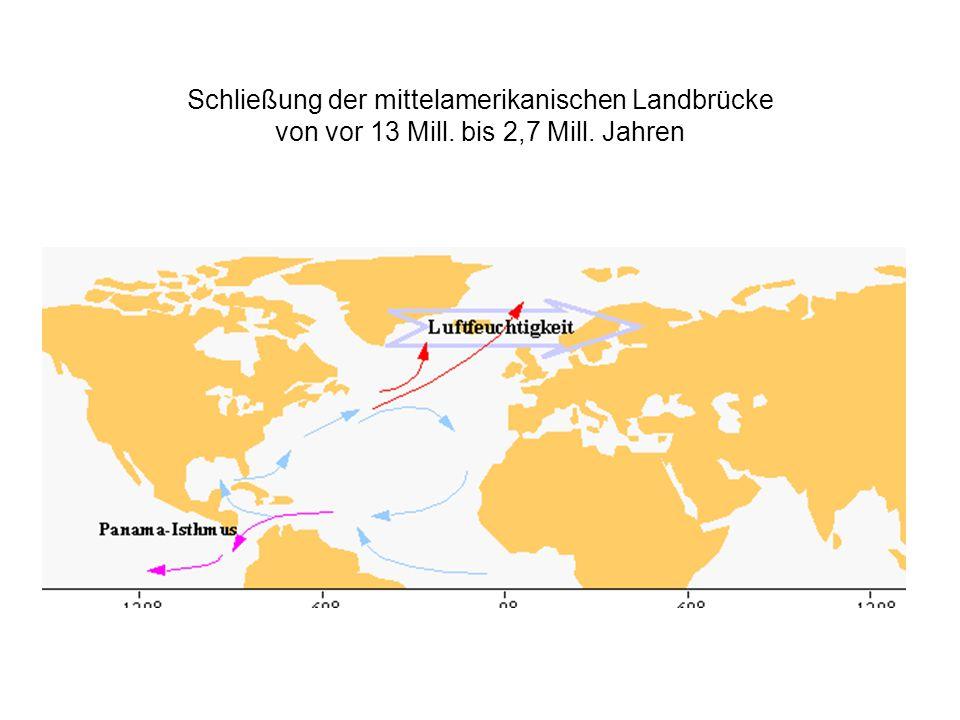 Schließung der mittelamerikanischen Landbrücke von vor 13 Mill. bis 2,7 Mill. Jahren