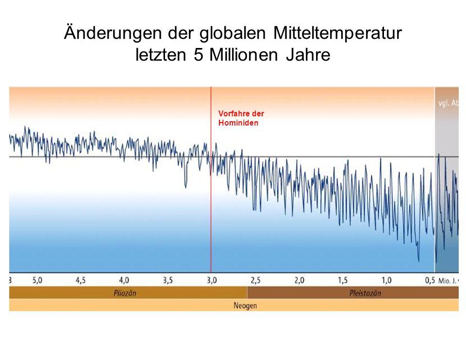 Änderungen der globalen Mitteltemperatur letzten 5 Millionen Jahre Vorfahre der Hominiden